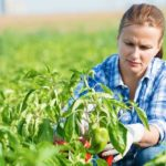 List of Agricultural Colleges in South Africa 2021