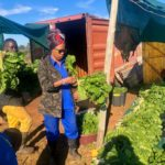 Top 10 Agricultural Colleges In South Africa 2021
